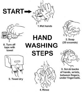 handwashing steps